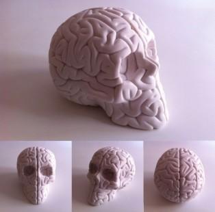 skullbrain-600x594