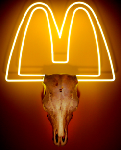 mcdonalds-009small