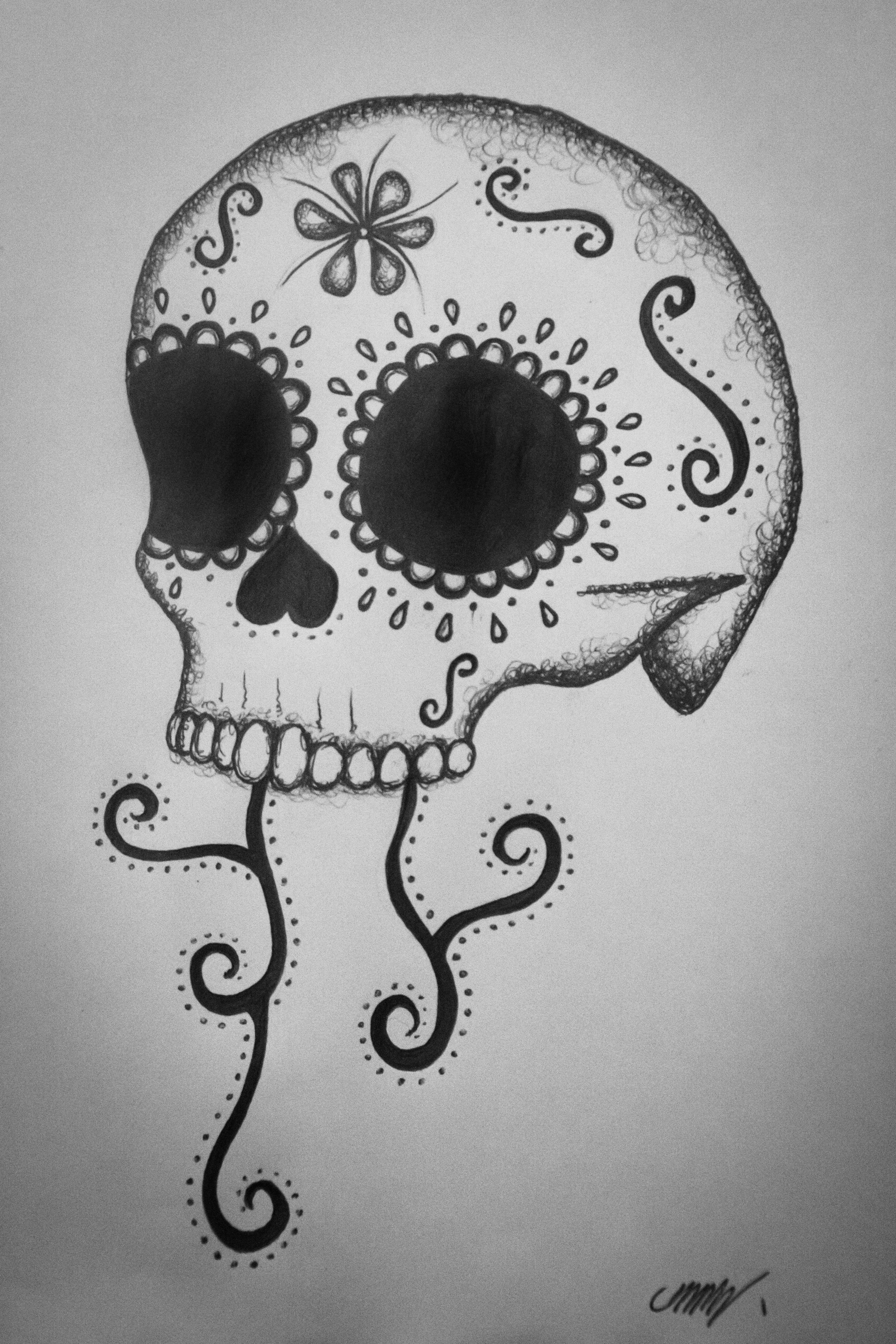 Sugar skulls skullsproject dsc2293 biocorpaavc Images
