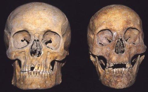 skullsex
